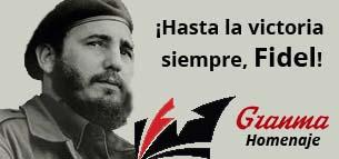 banner_hasta_la_victoria_siempre_ing
