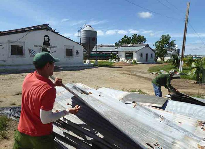 Workers immediately set about collecting for reuse the roofing sheets that the winds ripped off.